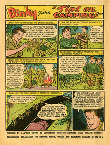 Adventure Comics 212 May 1955 Camping rsz.jpg